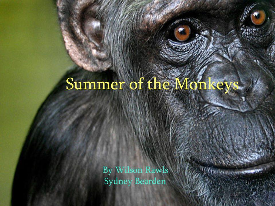 Summer of the Monkeys By Wilson Rawls Sydney Bearden