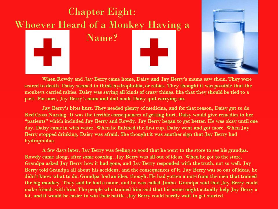 Chapter Eight: Whoever Heard of a Monkey Having a Name