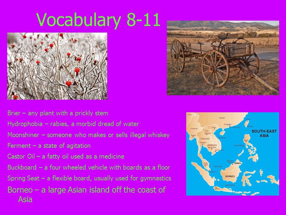 Vocabulary 8-11 Borneo – a large Asian island off the coast of Asia