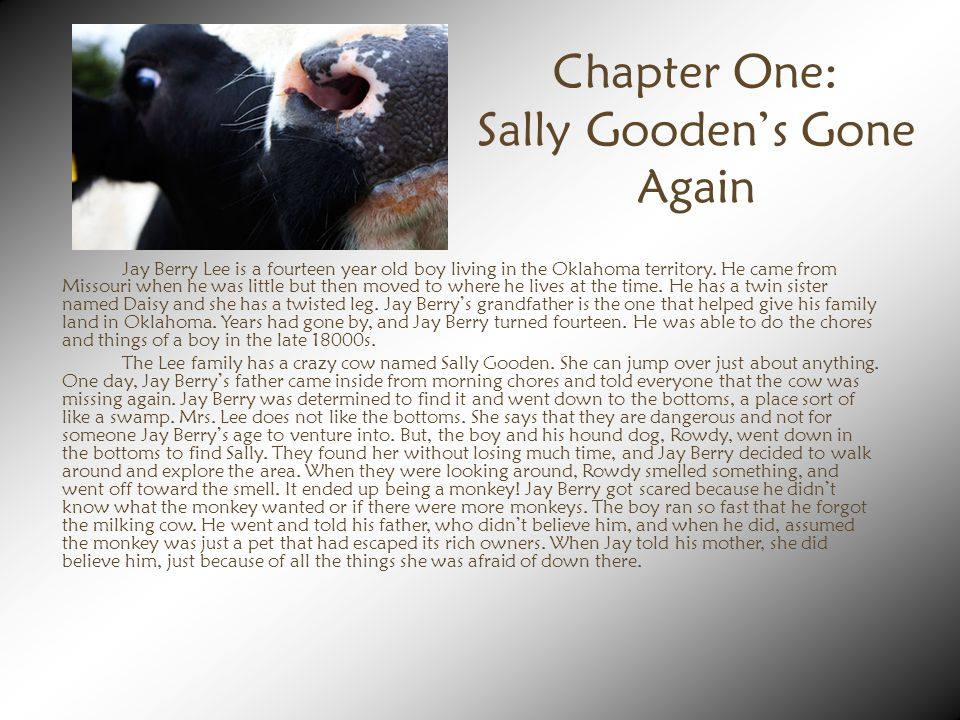 Chapter One: Sally Gooden's Gone Again