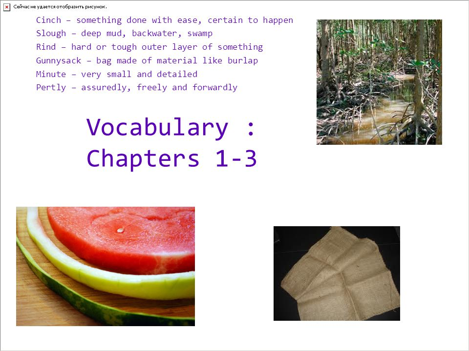 Vocabulary : Chapters 1-3
