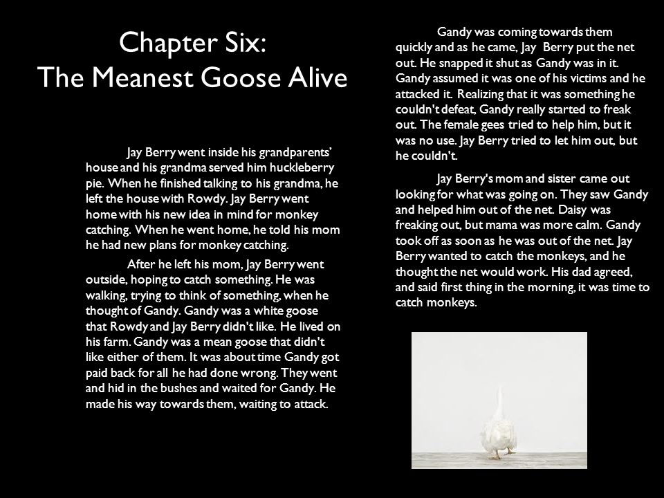 Chapter Six: The Meanest Goose Alive
