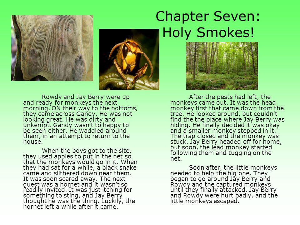 Chapter Seven: Holy Smokes!