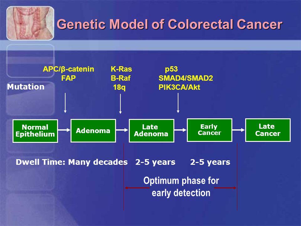 Genetic Model of Colorectal Cancer