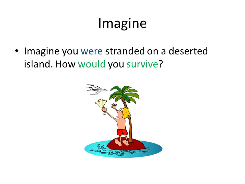 Imagine Imagine you were stranded on a deserted island. How would you survive