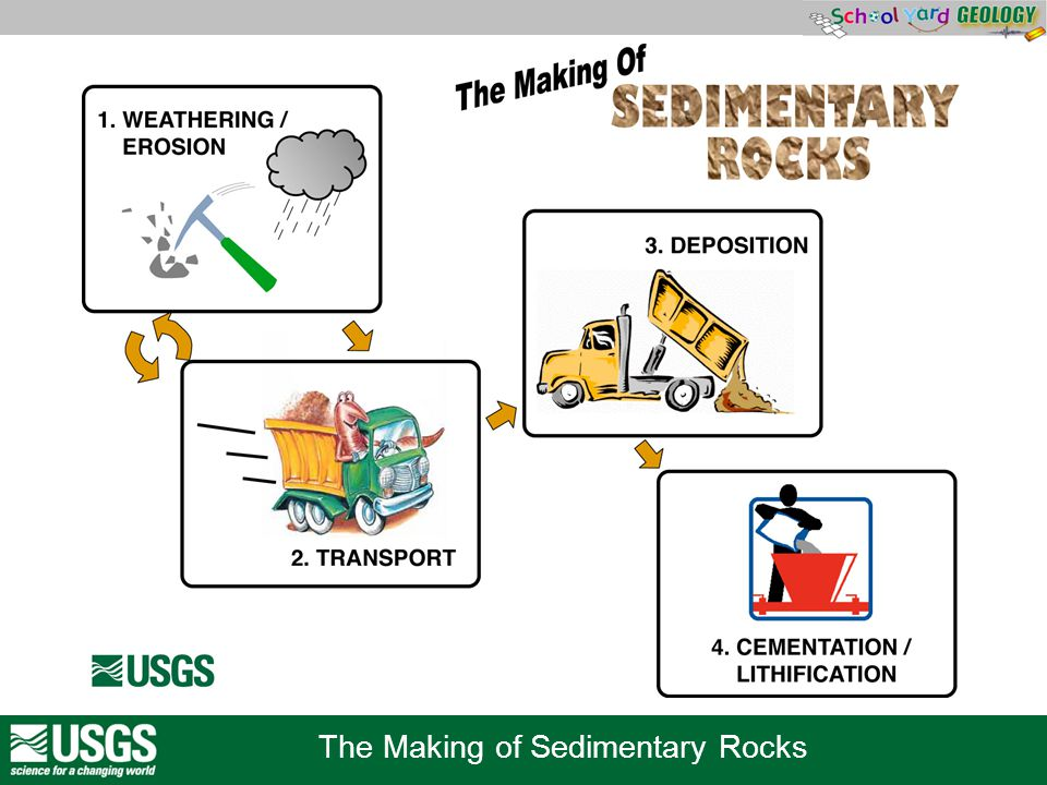 The Making of Sedimentary Rocks