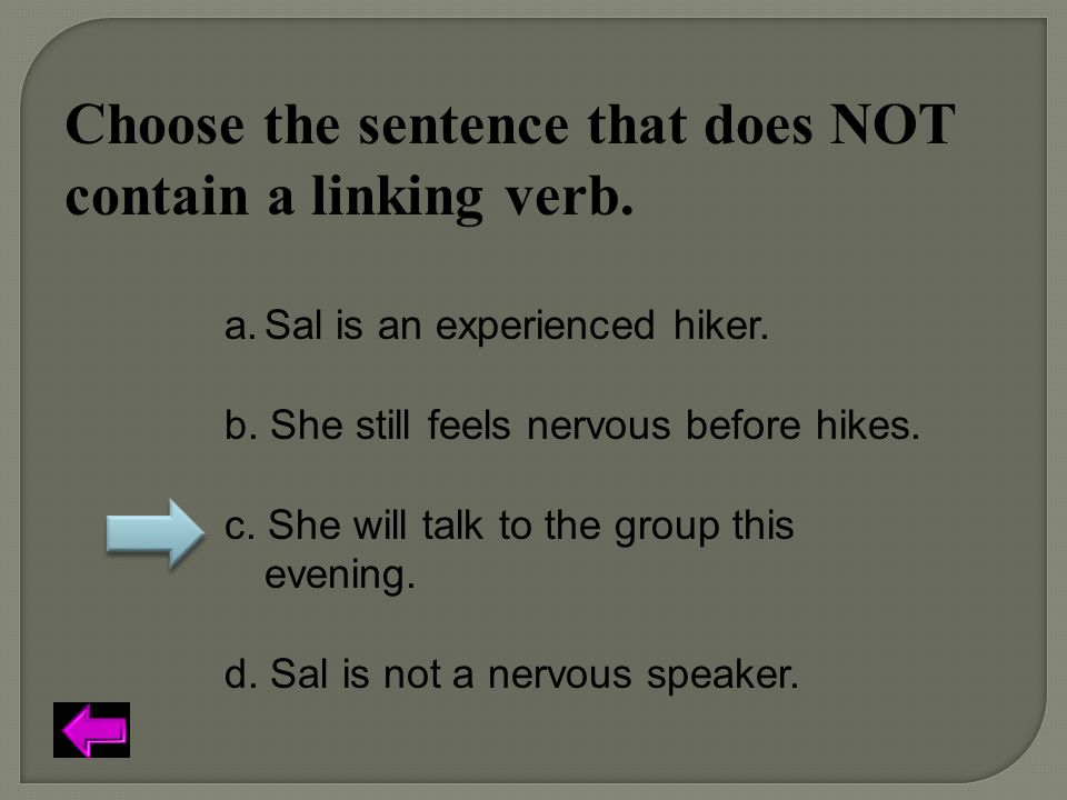 Choose the sentence that does NOT contain a linking verb.