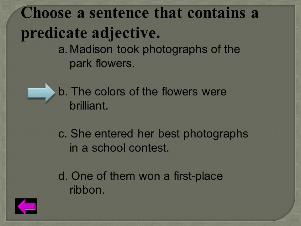 Choose a sentence that contains a predicate adjective.