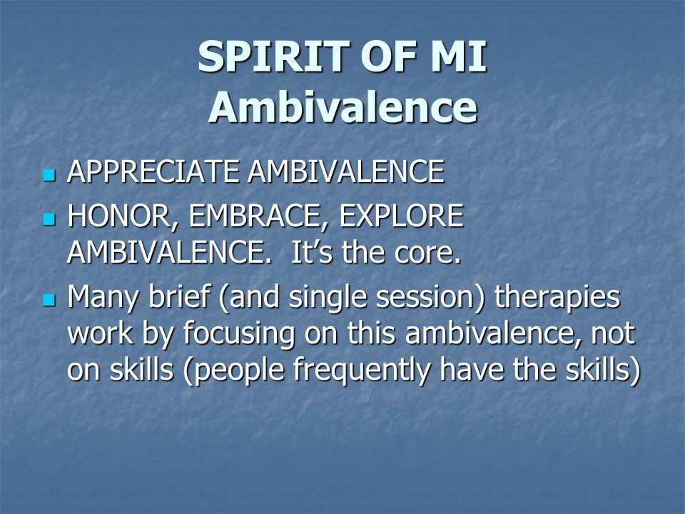 SPIRIT OF MI Ambivalence