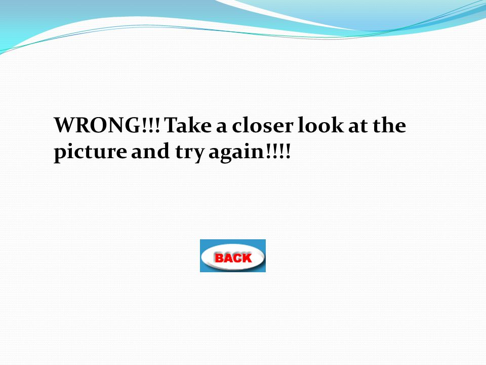 WRONG!!! Take a closer look at the picture and try again!!!!