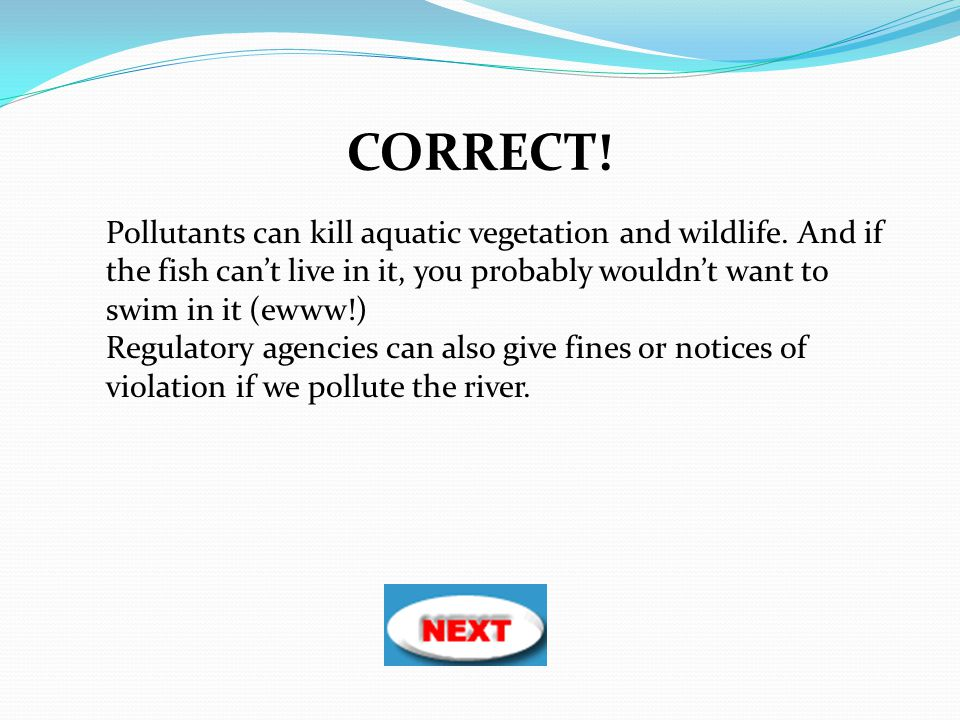 CORRECT! Pollutants can kill aquatic vegetation and wildlife. And if the fish can't live in it, you probably wouldn't want to swim in it (ewww!)