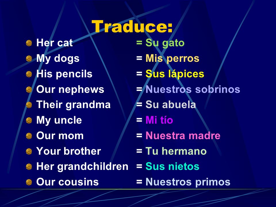 Traduce: Her cat = Su gato My dogs = Mis perros