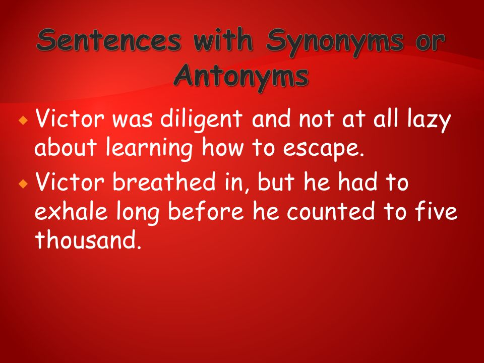 Sentences with Synonyms or Antonyms