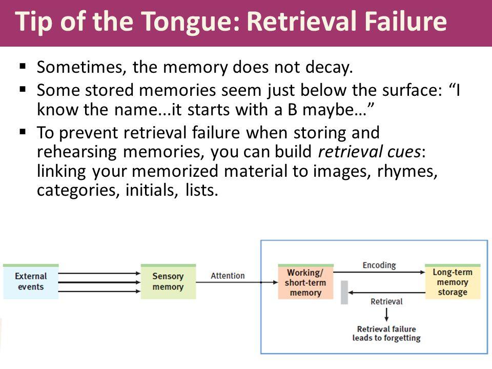 Tip of the Tongue: Retrieval Failure