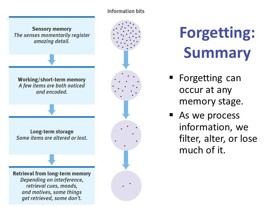 Forgetting: Summary Forgetting can occur at any memory stage.