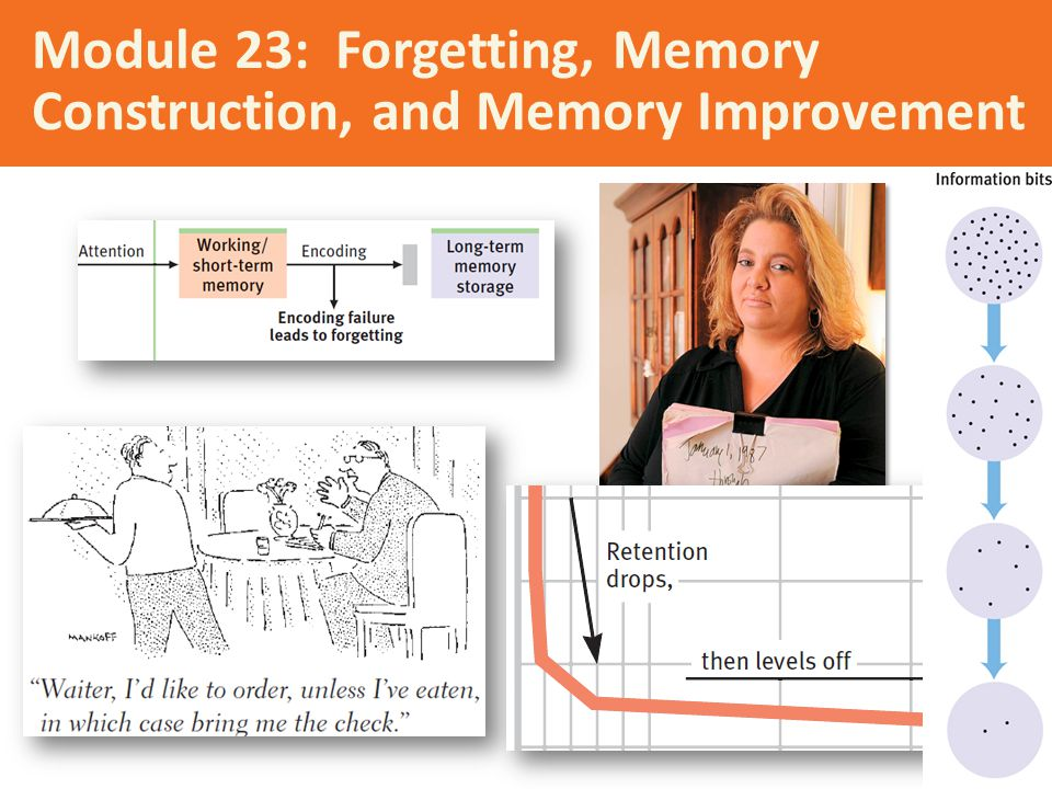 Module 23: Forgetting, Memory Construction, and Memory Improvement