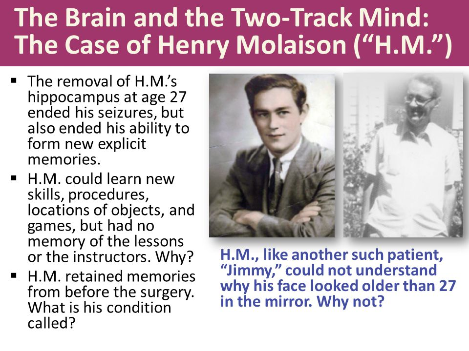 The Brain and the Two-Track Mind: The Case of Henry Molaison ( H.M. )