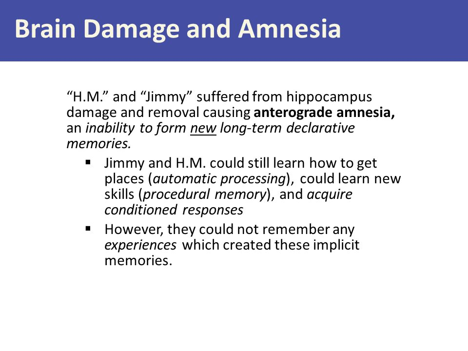 Brain Damage and Amnesia