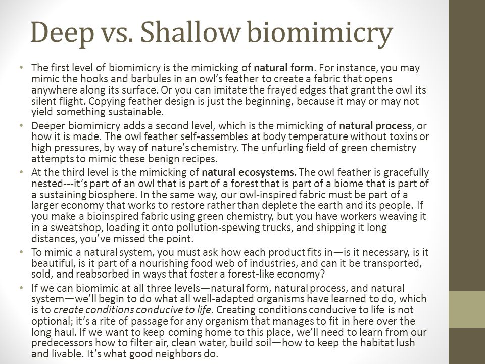 Deep vs. Shallow biomimicry