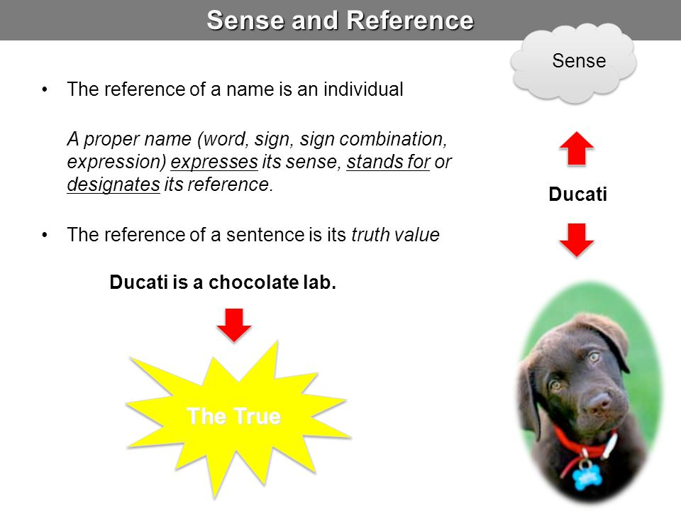 Sense and Reference The True Sense
