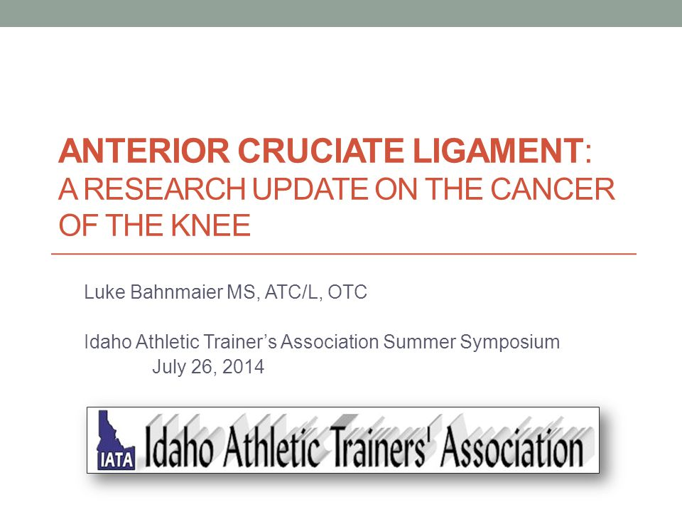 Anterior Cruciate Ligament: A research update on the cancer of the knee