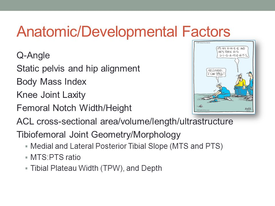 Anatomic/Developmental Factors