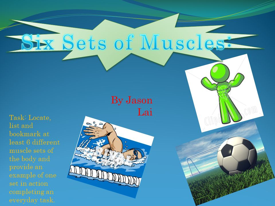 Six Sets of Muscles: By Jason Lai