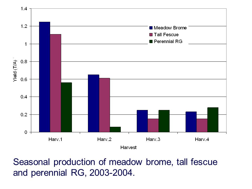Seasonal production of meadow brome, tall fescue and perennial RG, 2003-2004.