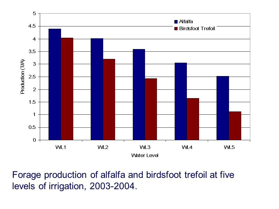Forage production of alfalfa and birdsfoot trefoil at five levels of irrigation, 2003-2004.