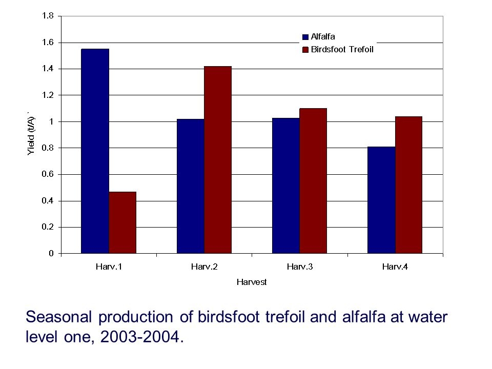 Seasonal production of birdsfoot trefoil and alfalfa at water level one, 2003-2004.
