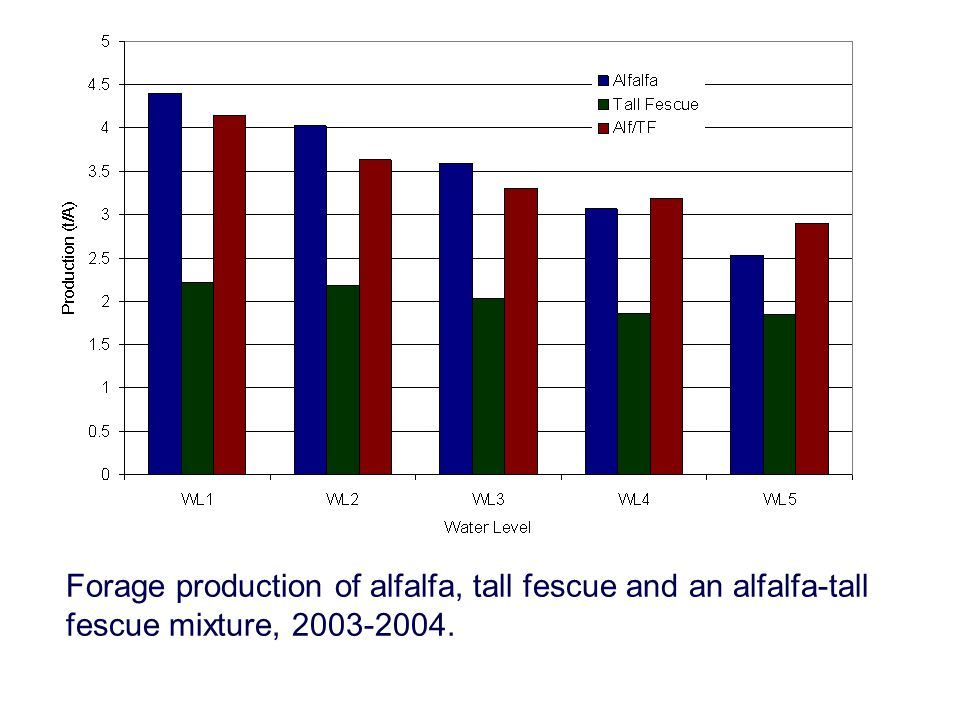 Forage production of alfalfa, tall fescue and an alfalfa-tall fescue mixture, 2003-2004.