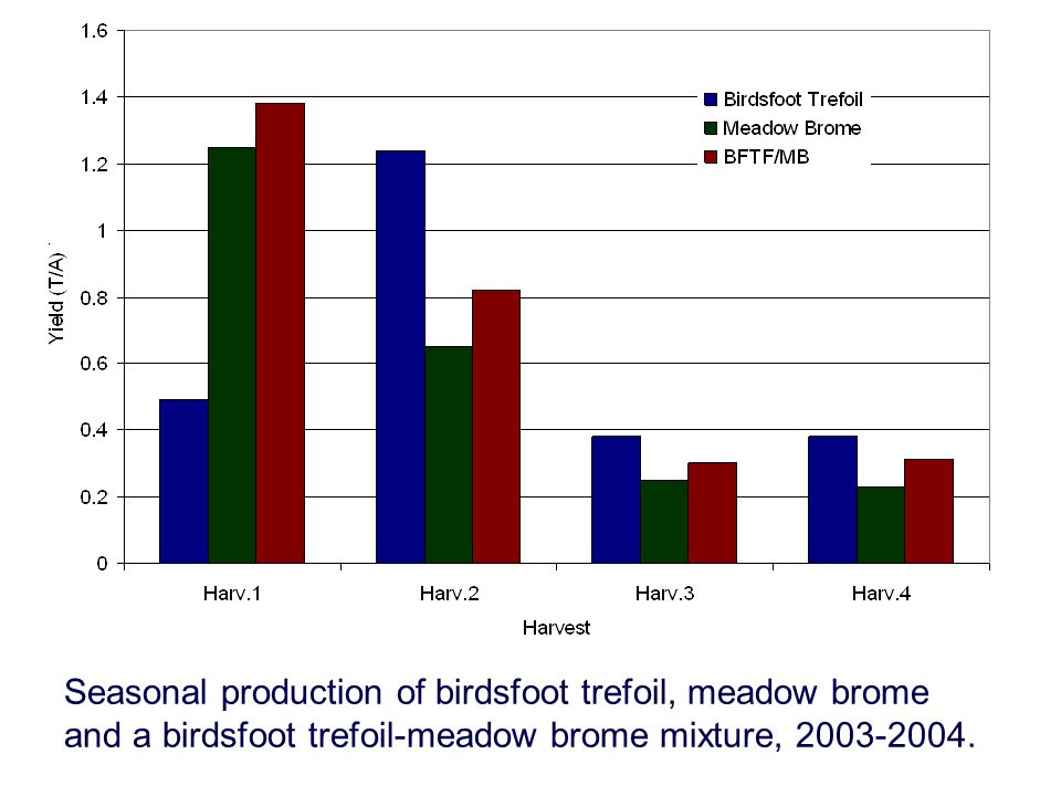 Seasonal production of birdsfoot trefoil, meadow brome and a birdsfoot trefoil-meadow brome mixture, 2003-2004.