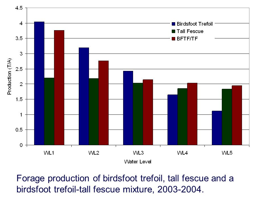 Forage production of birdsfoot trefoil, tall fescue and a birdsfoot trefoil-tall fescue mixture, 2003-2004.