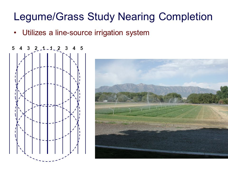 Legume/Grass Study Nearing Completion