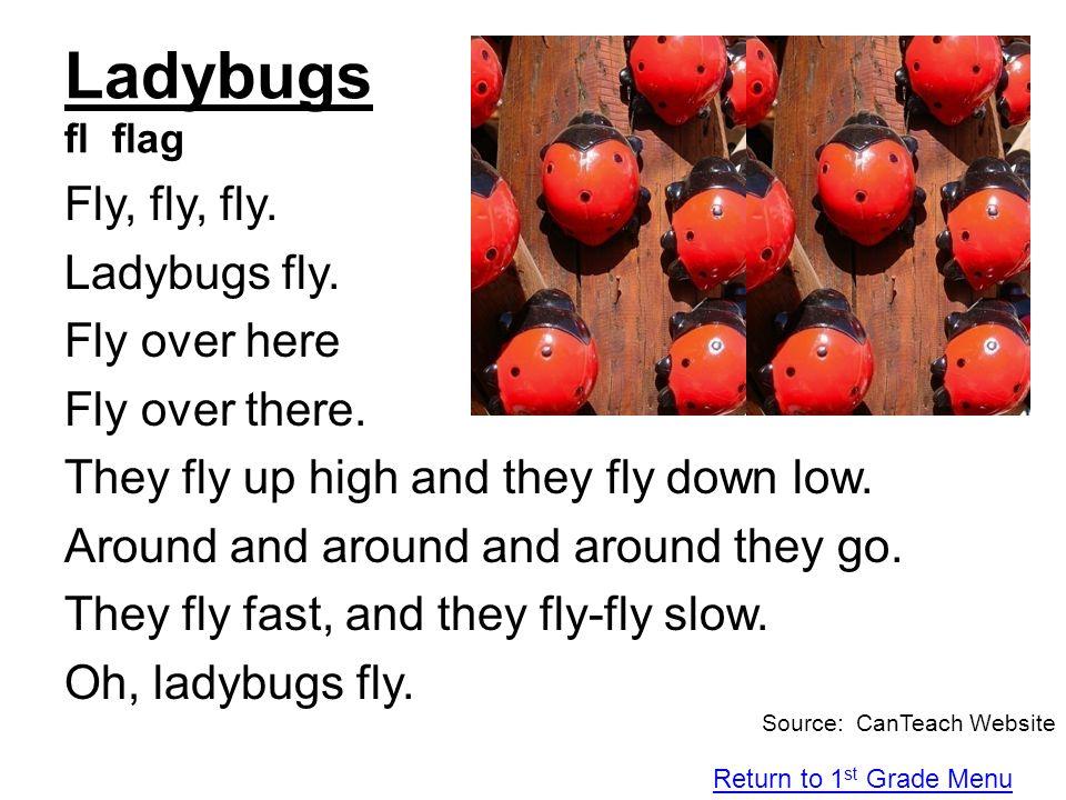 Ladybugs fl flag