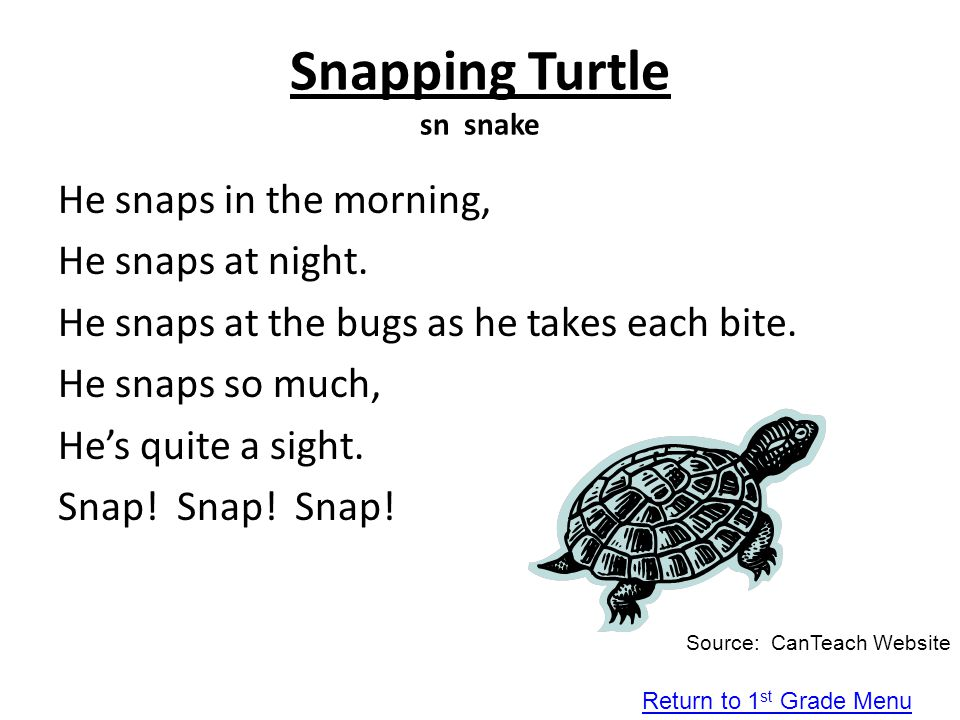 Snapping Turtle sn snake