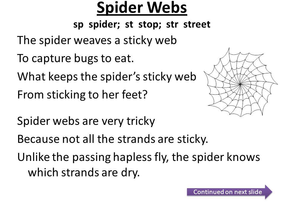 Spider Webs sp spider; st stop; str street