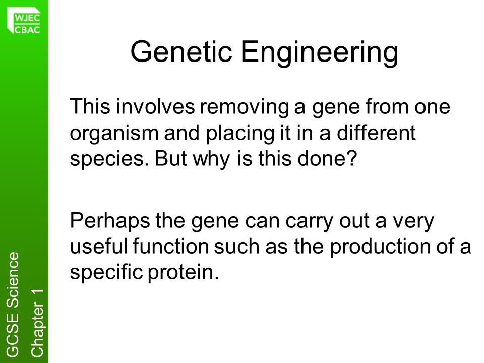 Genetic Engineering This involves removing a gene from one organism and placing it in a different species. But why is this done