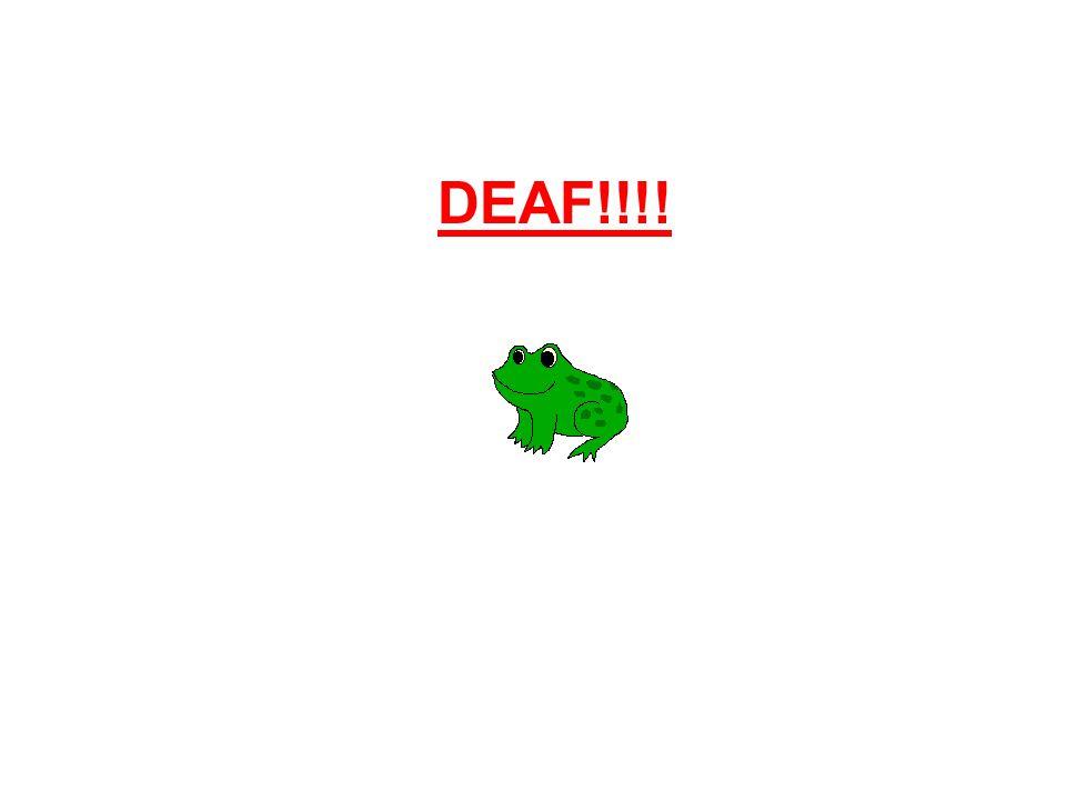 DEAF!!!!