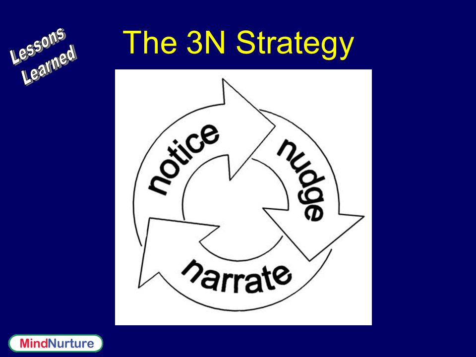 The 3N Strategy Lessons Learned