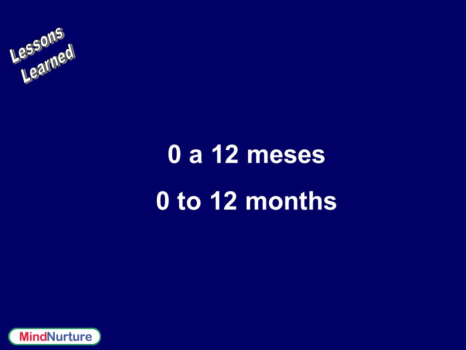 0 a 12 meses 0 to 12 months Lessons Learned
