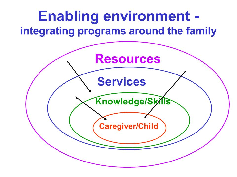 Enabling environment -integrating programs around the family