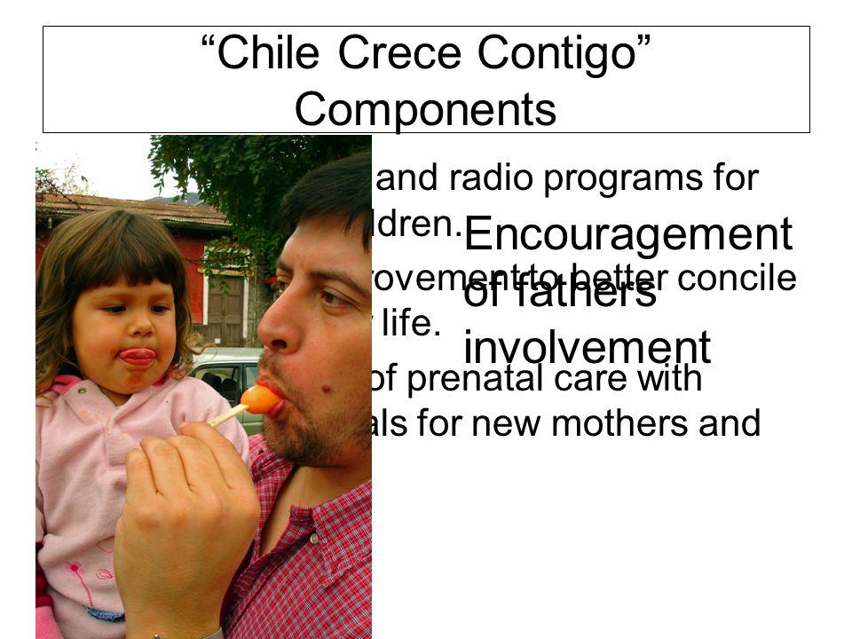 Chile Crece Contigo Components