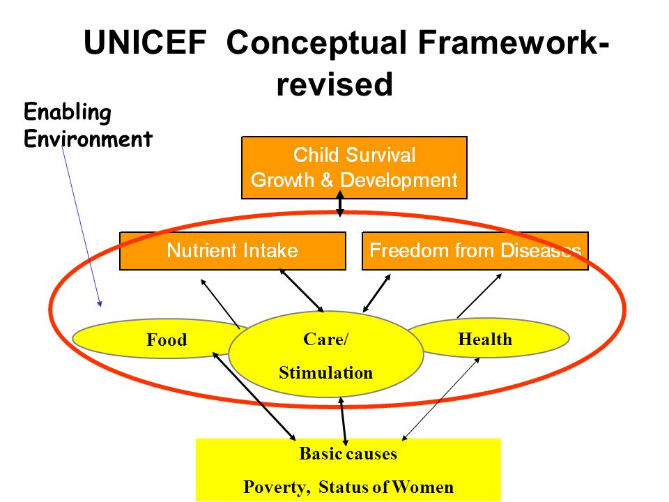 UNICEF Conceptual Framework-revised