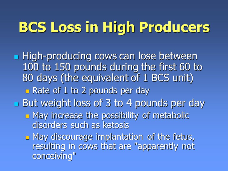 BCS Loss in High Producers
