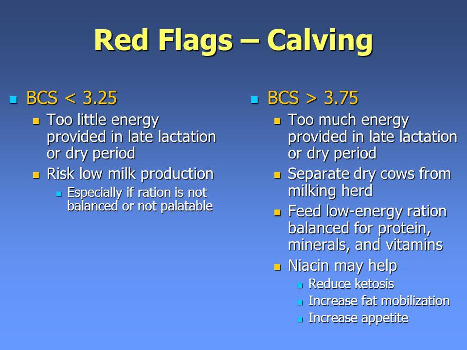 Red Flags – Calving BCS < 3.25 BCS > 3.75