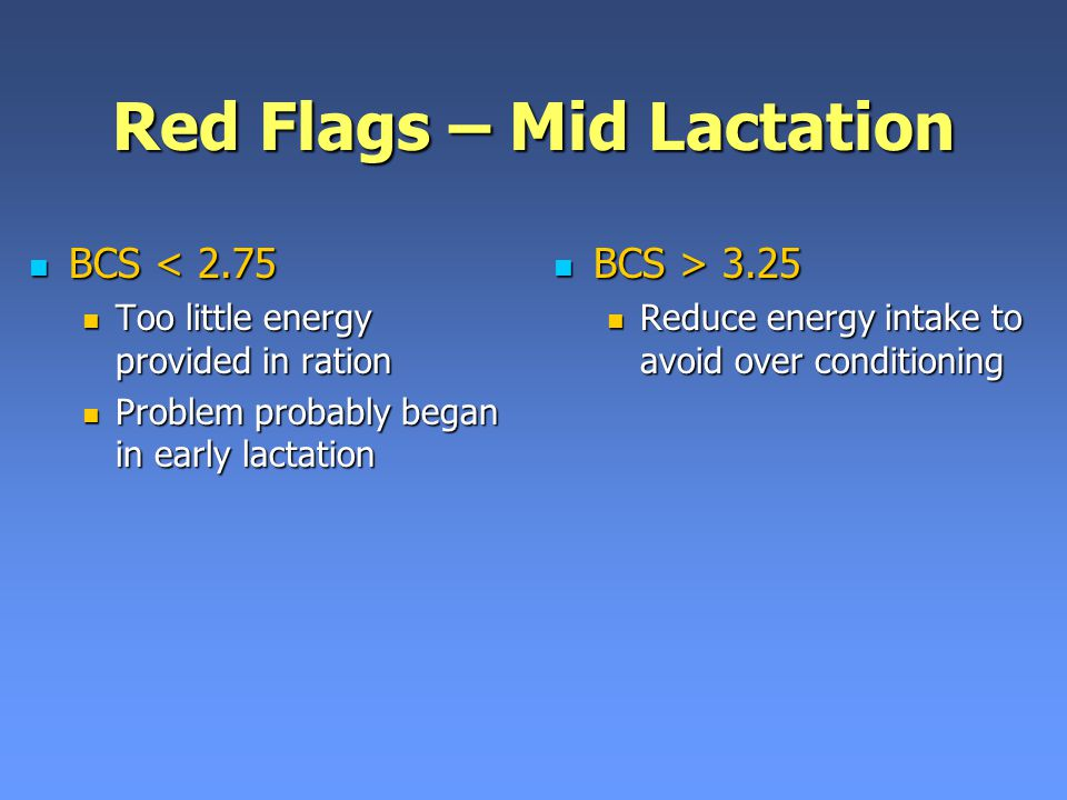 Red Flags – Mid Lactation