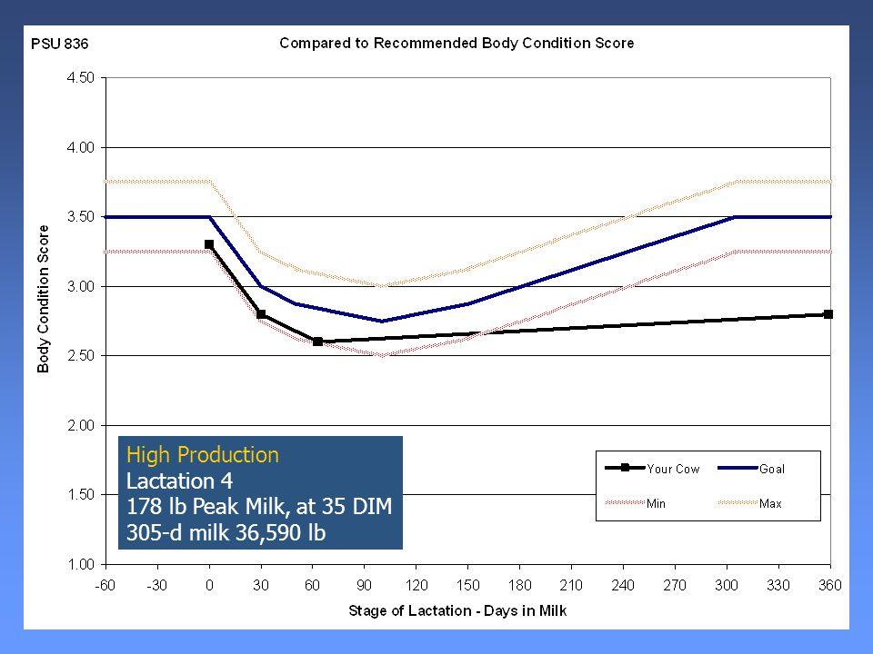 High Production Lactation 4 178 lb Peak Milk, at 35 DIM 305-d milk 36,590 lb