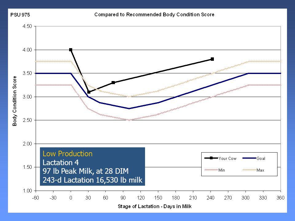 Low Production Lactation 4 97 lb Peak Milk, at 28 DIM 243-d Lactation 16,530 lb milk