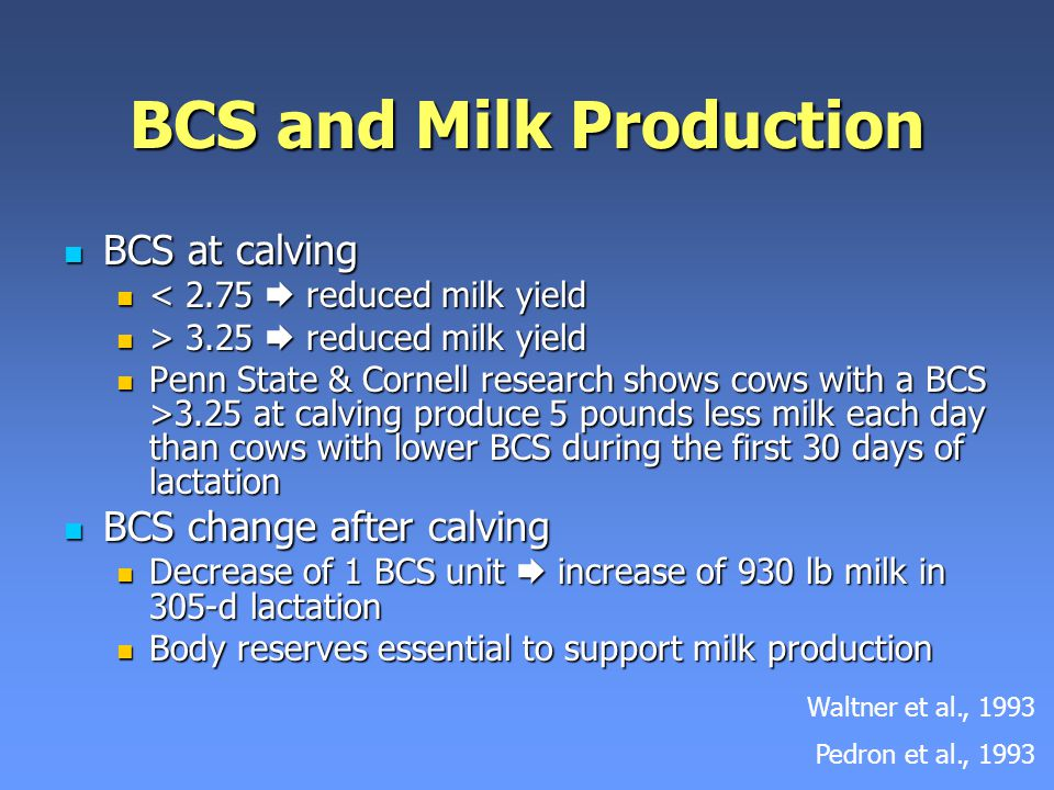 BCS and Milk Production